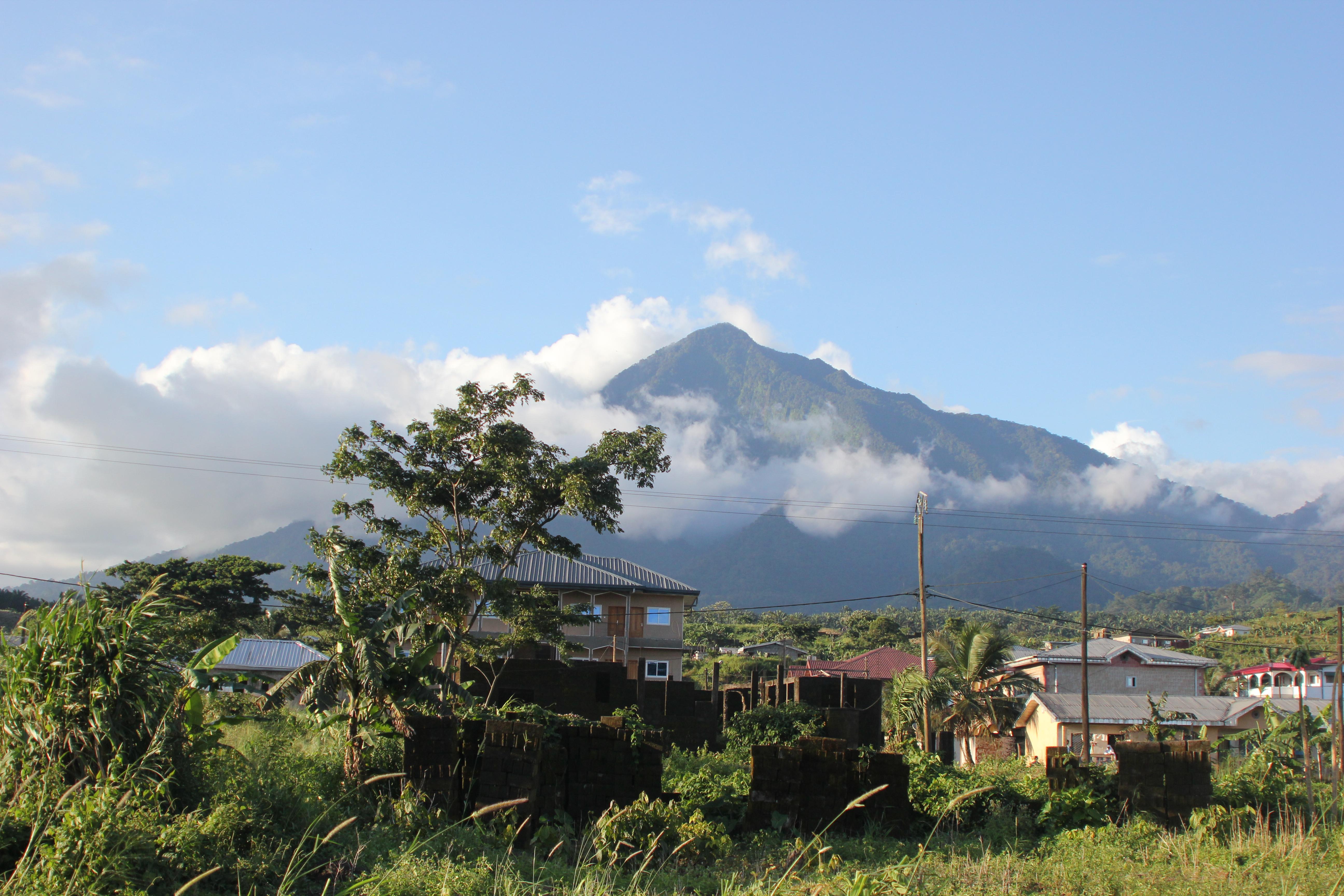 C-Life Cameroon